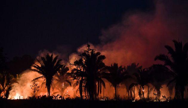 아마존 우림을 지나는 브라질 파라주 BR163 고속도로에서 본 화재 모습. BR230과 BR163은 세계에서 가장 큰 우림을 개발하고 파괴하는데 주요 역할을 했다.