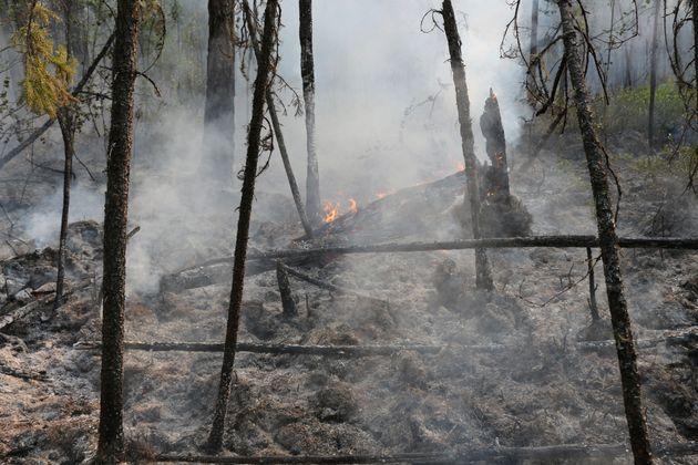 러시아 크라스노야르스크 지역 보구찬스크. 수백 곳의 도시와 마을이 시베리아와 극동 지역의 들불로 인한 짙은 연기에 휩싸였다.