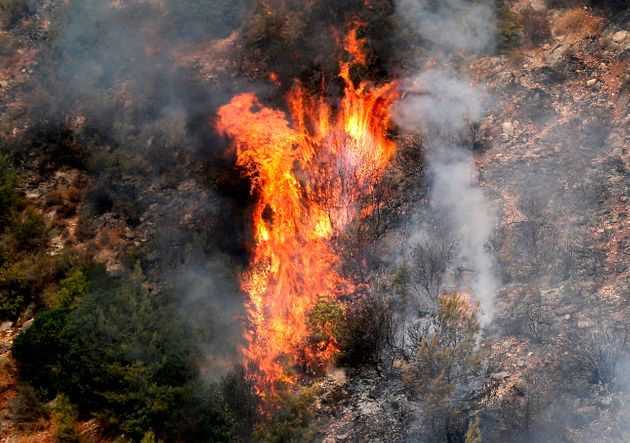 레바논 슈프 산맥의 메시레프 마을 근처, 다무르강 옆의 산악지대에서 숲이 불타고 있다. 높은 기온과 강한 바람이 가세해 더욱 심해졌다.