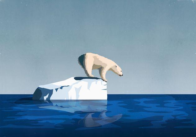 지난 1년 동안 마주친 '기후 위기' 쇼크