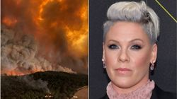 Pink Pledges $500,000 To Fight Australia Wildfires: 'I Am Totally