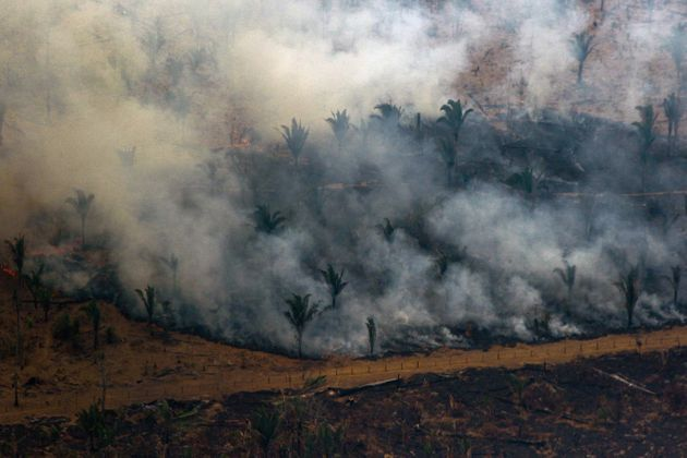 TOPSHOT - Aerial view showing smoke billowing from a patch of forest being cleared with fire in the surroundings...