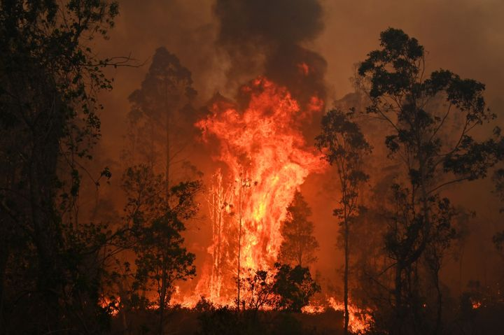A fire rages in Bobin, 350 km north of Sydney, on Nov. 9, as firefighters try to contain dozens of out-of-control blazes ragi
