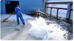 セイウチがお手伝いする「おたる水族館式雪かき」。放水攻撃であっという間に綺麗さっぱり(動画)