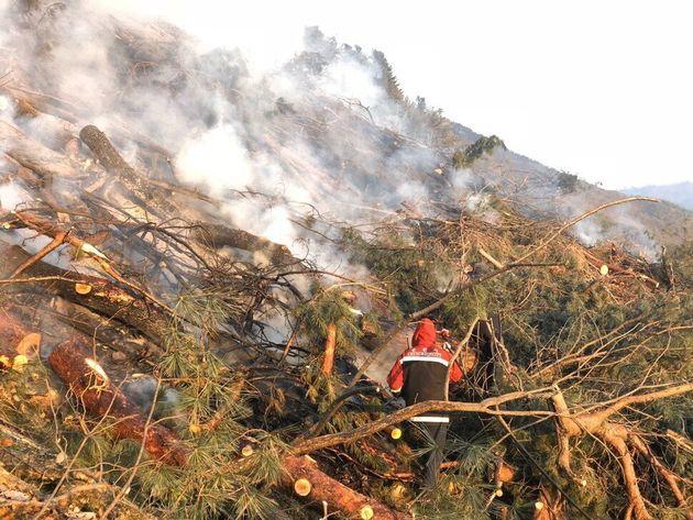 강원 춘천 신북읍에서 발생한 산불이 7㏊를