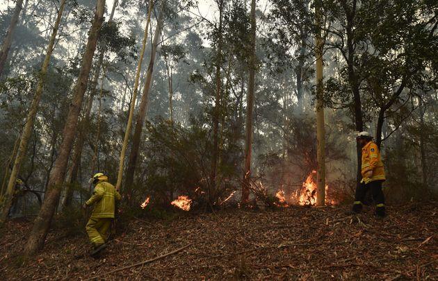 Αυστραλία: Νέες δασικές πυρκαγιές - Τουλάχιστον 24 νεκροί και τεράστιες υλικές