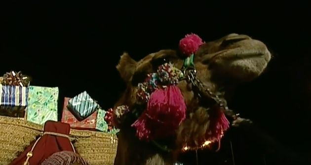 El camello de Melchor en la cabalgata de
