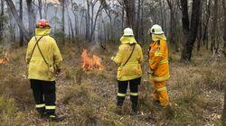 Une carte de l'Australie montrant tous les incendies depuis un
