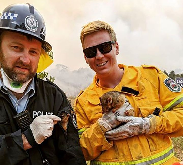 New South Wales Rural Fire Service firefighter and police officer hold a possum and her baby after they rescued them from under a car during the bushfires on New Year's Eve.