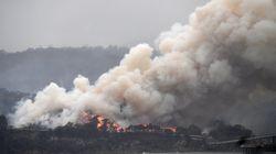 Le Chili et l'Argentine touchés par des fumées provenant des feux