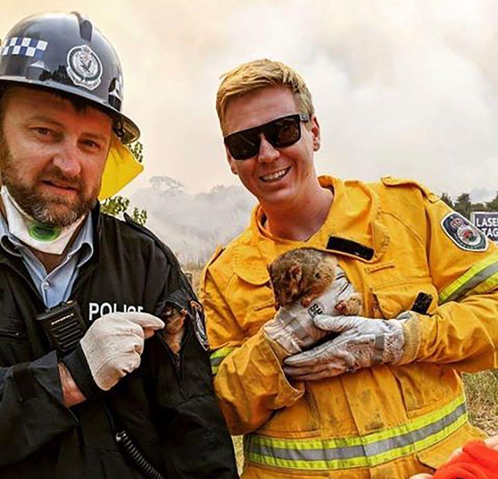 Un agent de police et un pompier du service d'incendie de la Nouvelle-Galles du Sud ont secouru un opossum et son bébé après les avoir repérés sous une voiture pendant les feux de forêt, le soir du Nouvel An.