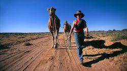 Πάνω από 10.000 καμήλες θα θανατωθούν στην Αυστραλία, επειδή «πίνουν πολύ