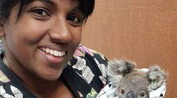 Une vétérinaire québécoise soigne les animaux victimes des feux en