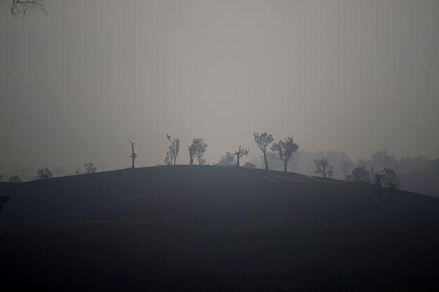 Bushfire smoke has reached South