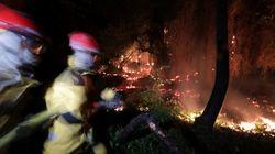 Des mega-feux comme en Australie sont-ils possibles en France
