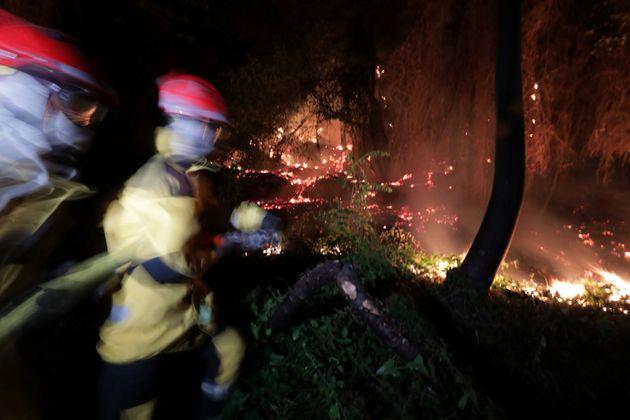 Des pompiers français combattant les flammes en juillet 2017 près de