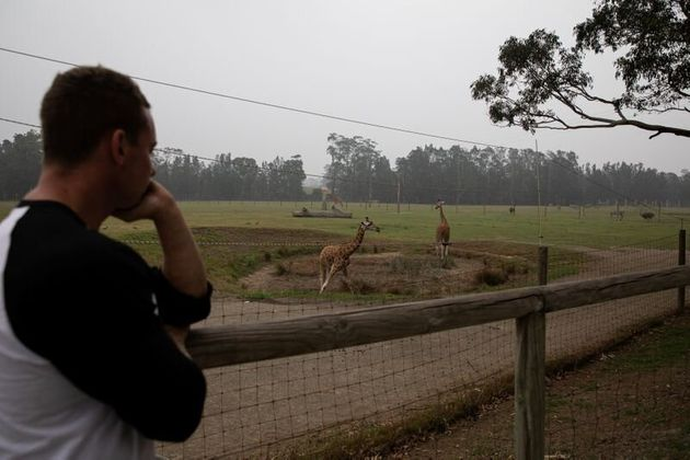Αυστραλία: Οι ήρωες ζωολογικού κήπου σώζουν ανυπεράσπιστα ζώα από τις