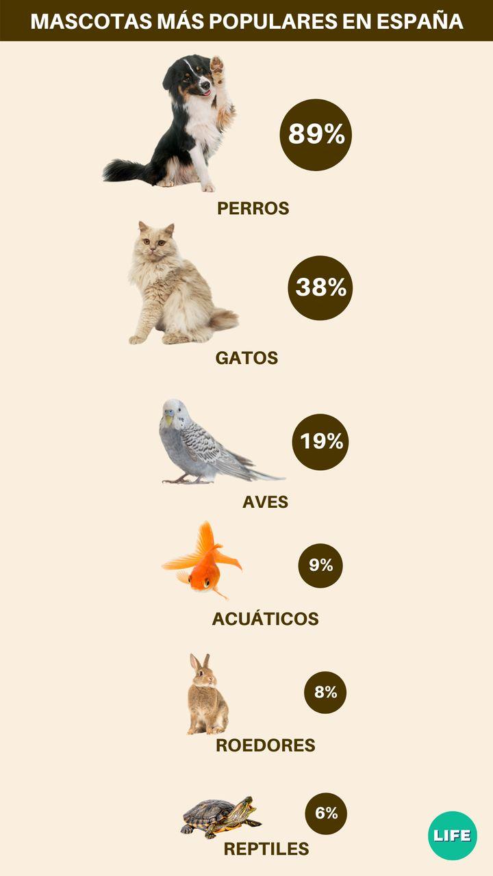 Porcentaje de mascotas en Espa&ntilde;a, por tipo de animal. <br />Fuente: Tiendanimal.es