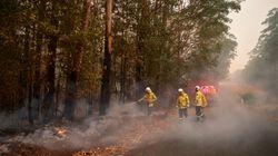 Incendi in Australia, la prima cosa da spegnere sono le fake