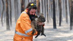 Dramatic Images From Australia's Bushfires Show The Country's Incredible