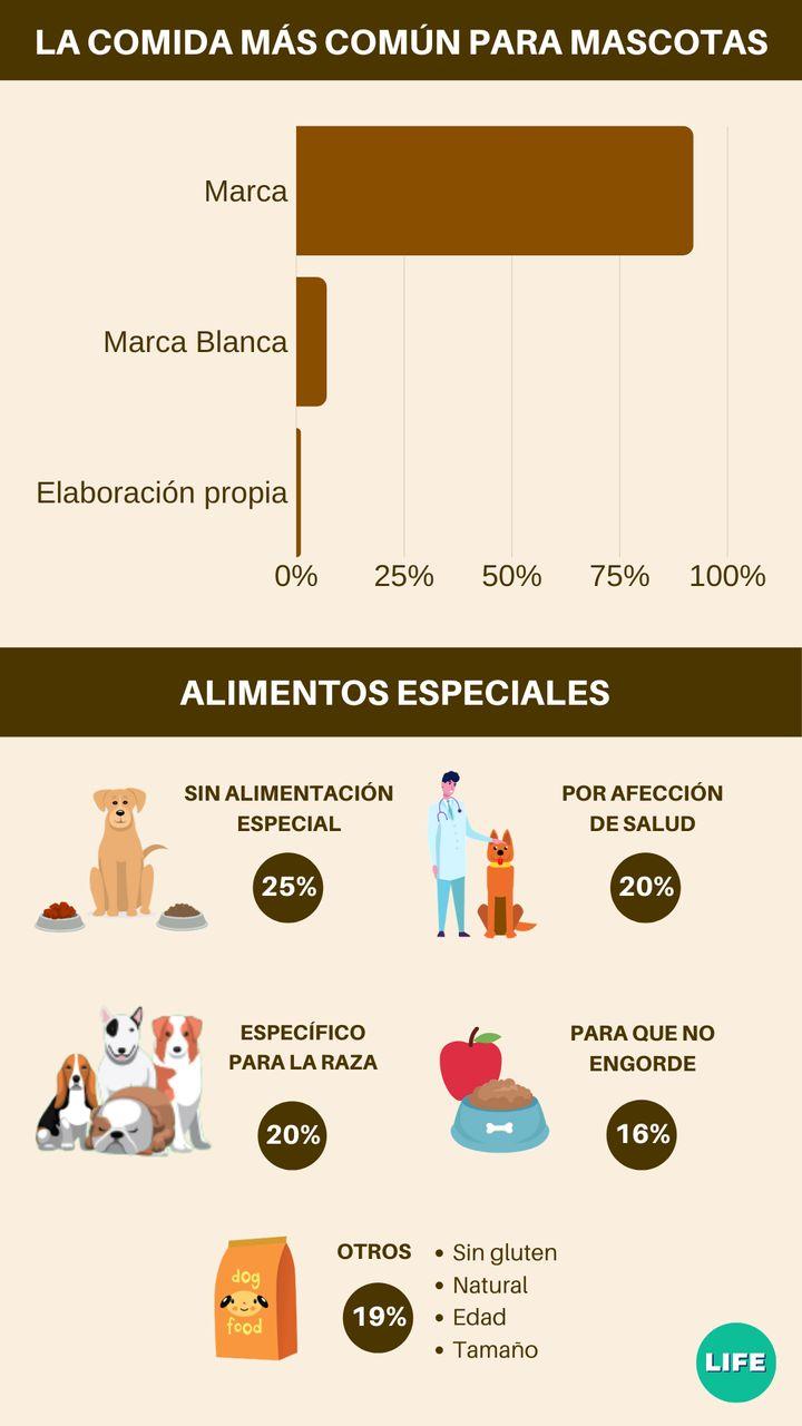 Gasto en comidas de animales y elección de los alimentos. Fuente: tiendanimal.es