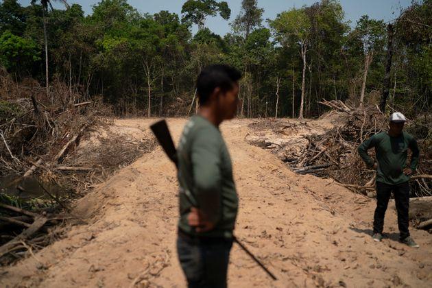 Propostas do PSL limitam punição a crimes ambientais e liberam agropecuária em terras