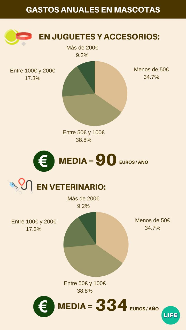 Gasto medio anual en juguetes y veterinarios. Fuente: tiendanimal.es