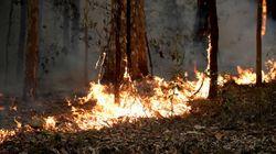 Le bilan des incendies en Australie monte à 27