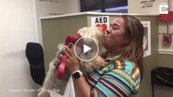 Una scena da film. Dopo 3 anni ritrova la cagnolina scomparsa e scoppia in lacrime