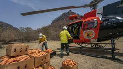 Australia lanza desde helicópteros comida a los animales afectados por los