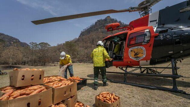 Australia lanza desde el helicóptero comida para los