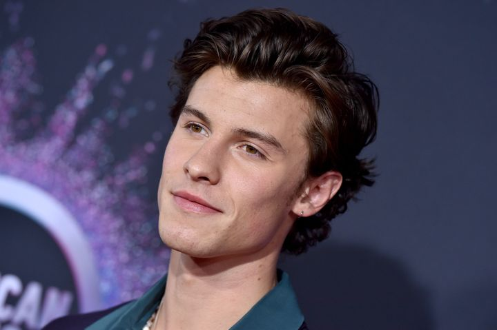 Singer Shawn Mendes donated to the Red Cross and local fire services.