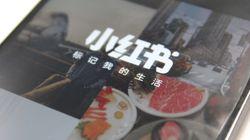 """""""成分分析""""と""""証拠写真付きレビュー""""...中国版インスタに生まれた厳格すぎる「タネ草」の世界"""