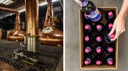 Cerveja contaminada: O que é o dietilenoglicol e por que ele é tão perigoso para a