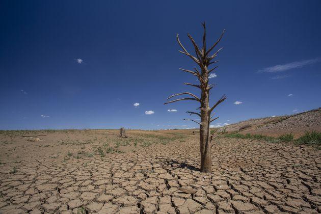 Avec le réchauffement climatique, la décennie passée a été la plus...