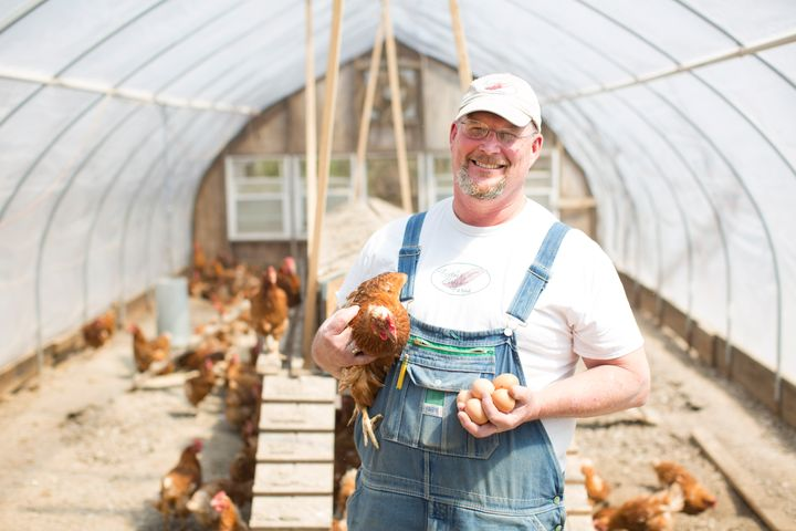 The hens at Feather Brook Farm in Massachusetts have continuous access to the outdoors during their laying cycle.