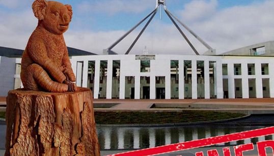 Australian Parliament Rejects 'Lewis The Koala' Statue Honouring Fire