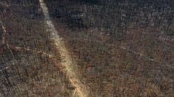 Αυστραλία: Βροχοπτώσεις ανακουφίζουν πυρόπληκτες