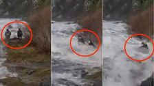 Ψύξη Βίντεο Δείχνει Πόσο Γρήγορα Επικίνδυνες Απατεώνων Κύματα Μπορεί Να Χτυπήσει