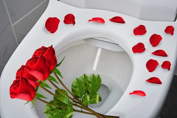 "Want to make a big splash on Valentine's Day? This <a href=""https://www.americanstandard-us.com/bathroom/spalet-bidet-seats/a"