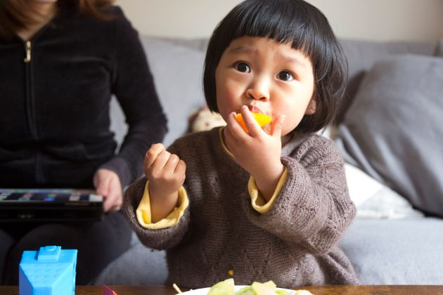 Healthy Snack Plate Dinner Ideas For Kids
