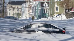 Newfoundlanders Are Making The Most Of Snowmaggedon, According To These