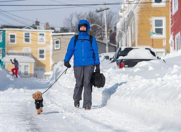 A woman walks her dog in St. John's on Jan. 18,