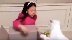 '고양이 학대 논란' 구사랑 어머니와 소속사가 밝힌
