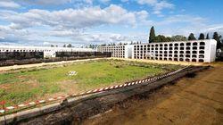 Empiezan los trabajos en la fosa Pico Reja (Sevilla), donde se exhumarán unos 1.103