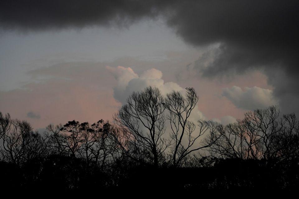 Fires continue on the devastated Kangaroo