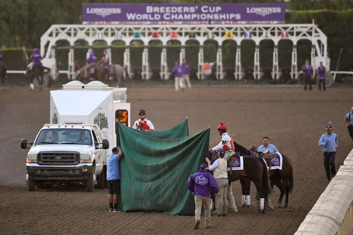 This Nov. 2, 2019, file photo shows track workers treating Mongolian Groom after the Breeders' Cup Classic horse race at Santa Anita Park in Arcadia, California.