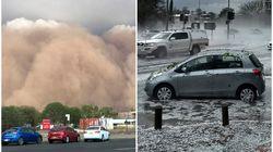 森林火災がつづくオーストラリア、砂嵐やひょうの被害に見舞われる(動画)