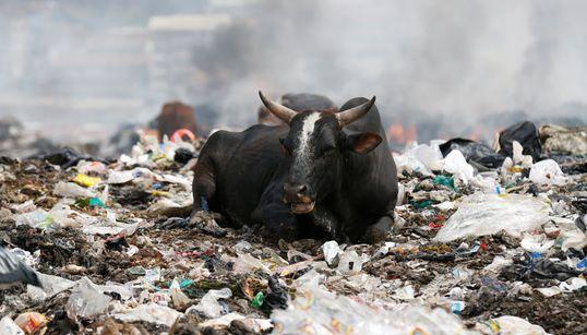 Εδώ και δύο χρόνια η Κένυα εφαρμόζει την αυστηρότερη απαγόρευση της πλαστικής σακούλας. Εχει
