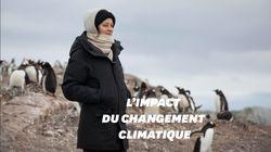 Marion Cotillard en Antarctique avec